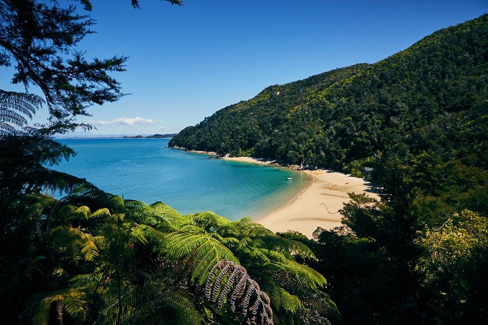 Coastal Track, High Tide, Track, Abel Tasman, Nationalpark, Reiseblog,
