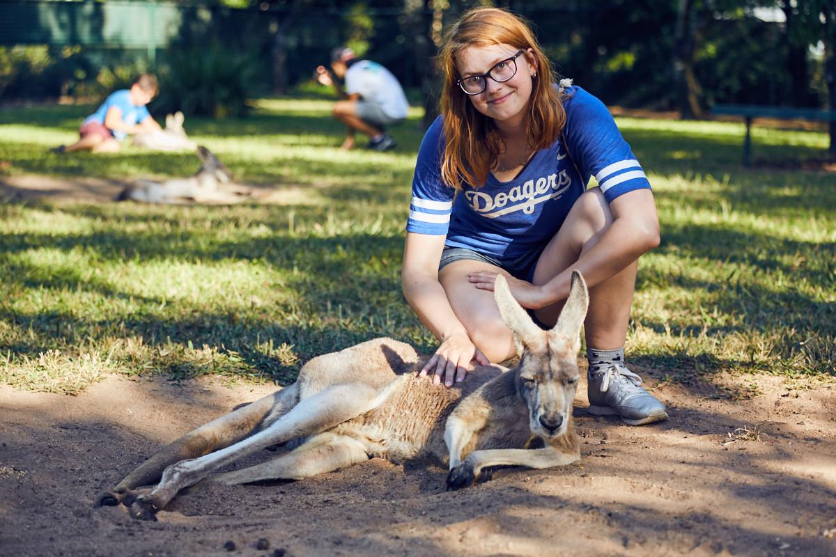Chrisi, Miles and Shores, Kangaroo, cangaroo, sleepy, grumpy, australia zoo, pet, wallaby,